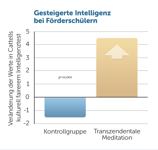 E7-Intelligenz-Foerderschueler