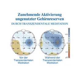 Dass die Transzendentale Meditation auch in der Praxis funktioniert, bestätigen hunderte wissenschaftliche Studien.